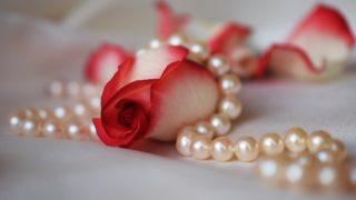 真珠の石言葉の意味と名前の由来は?貝の種類や色の見分け方と英語のスペル・発音も!