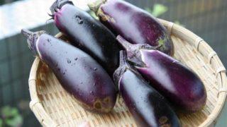 秋茄子は嫁に食わすなの本当の意味が怖い?解釈や例文・英語表記も!