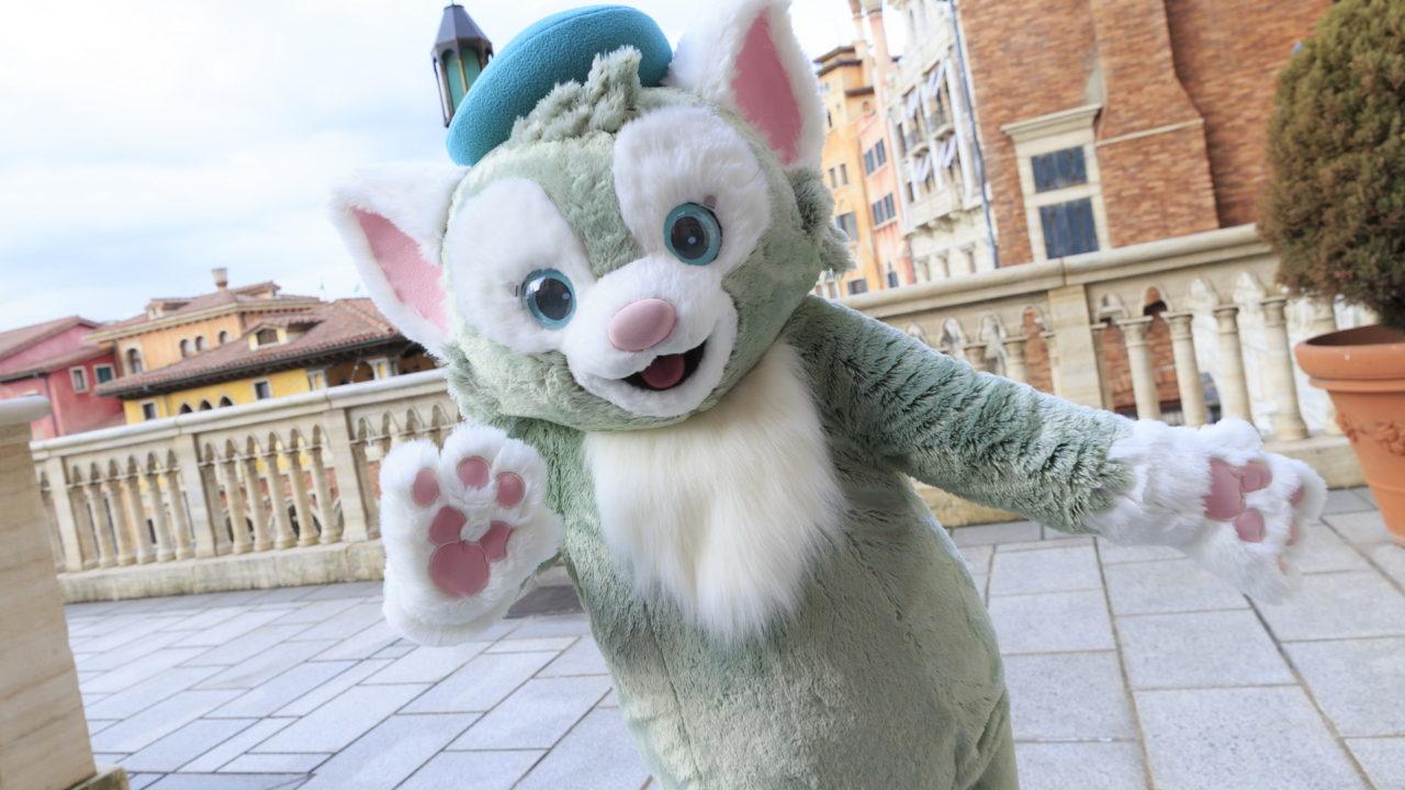 猫のジェラトーニの名前の由来や誕生秘話&誕生日はいつ?ダッフィーとの関係も!