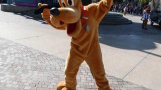 プルート(ディズニー)の犬種とは?誕生日や英語表記は?意味や由来も!