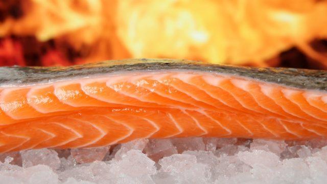 トラウトサーモンの意味とは?カロリーや栄養は・産地は?鮭の違いも!