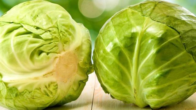 グリーンボールとは野菜?キャベツとの違いは?食べ方や栄養や味は?