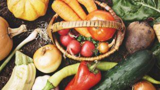 博多蕾菜(つぼみな)とは?食べ方や栄養・味は?旬の時期や産地も!