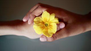 敬愛の意味とは?類語や例文を紹介!花言葉や四字熟語も調査!