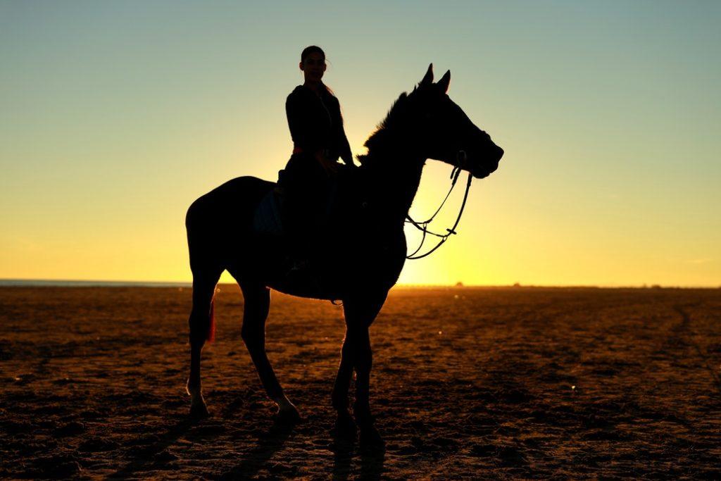塞翁が馬の意味とは?由来や使い方を簡単に紹介!ことわざなの?