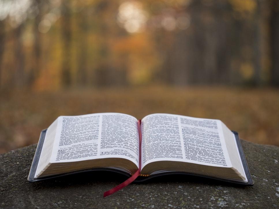 読み方 贖罪