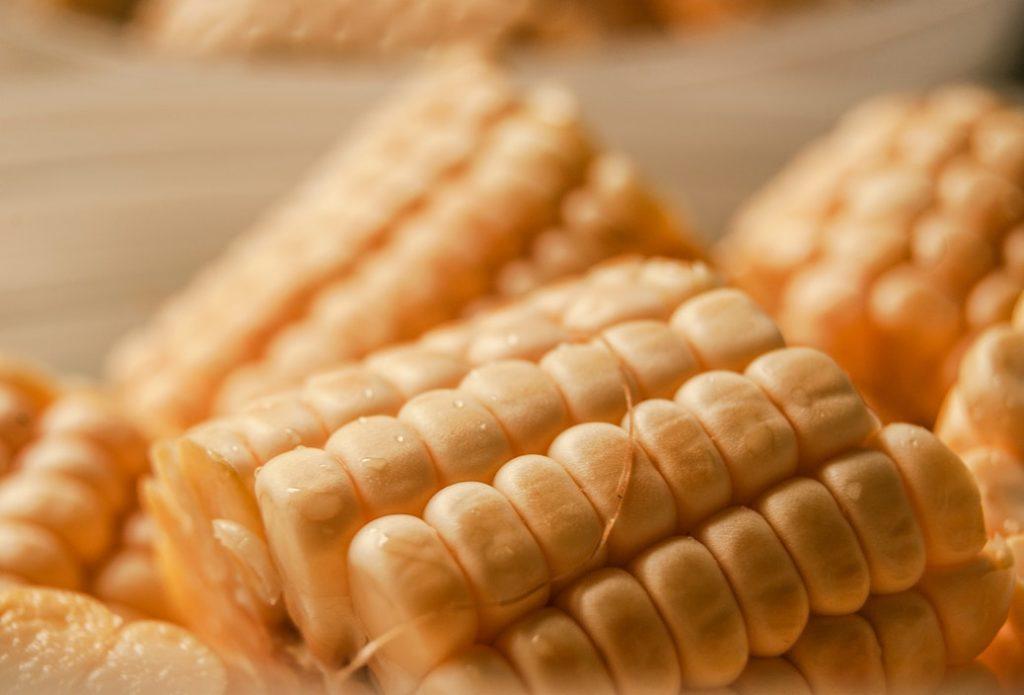 糧の意味とは?類語や使い方を超わかりやすく解説!「ジャニーズの糧/パス」とは?
